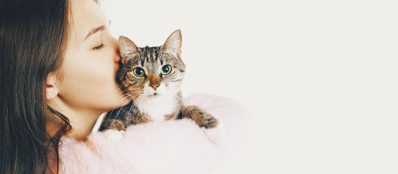 Manhattan Meow